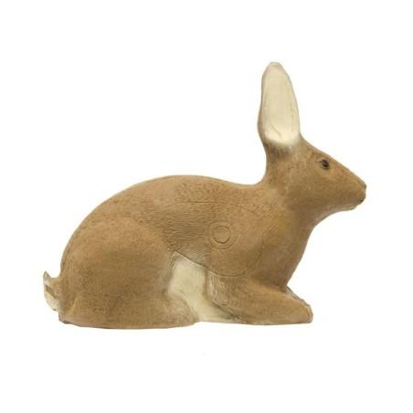 3-D Rabbit SRT Target
