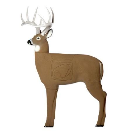 3-D Deer GlenDel Buck