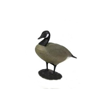 FULL FULL DECOY CANADA GOOSE 4 PCS 78572