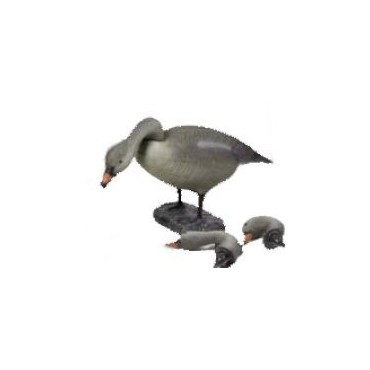 FULL FULL DECOY GOOSE 6 PCS 78572